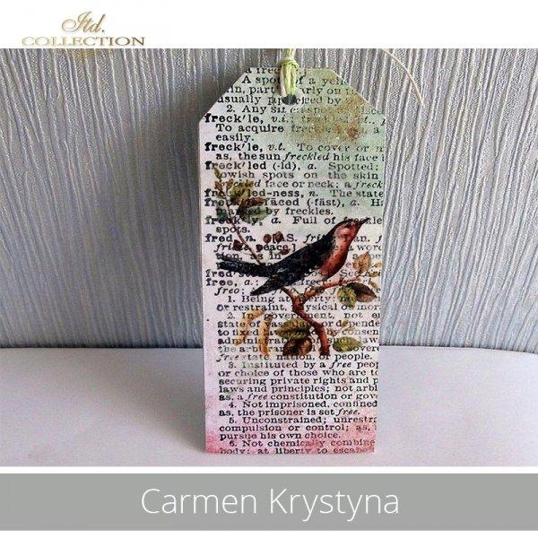 20190501-Carmen Krystyna-R0325-example 02