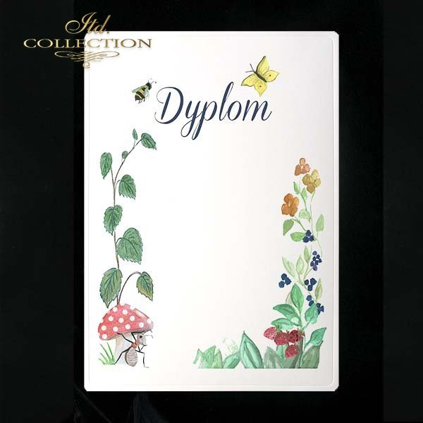 dyplom DS0233