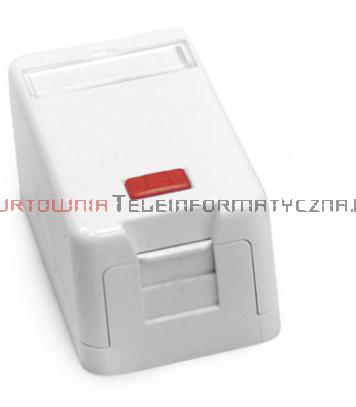 FIBRAIN DATA Moduł puszka natynkowa na 1 x keystone z etykietą i ID