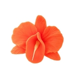 Storczyk kwiat cukrowy na tort 6cm pomarańczowy 1szt