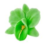 Storczyk kwiat cukrowy na tort 6cm pistacjowy 1szt