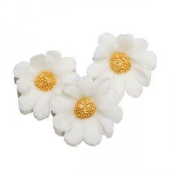 Stokrotka kwiaty cukrowe 5szt białe