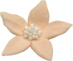 Płomyk kwiatki cukrowe 10szt łososiowe