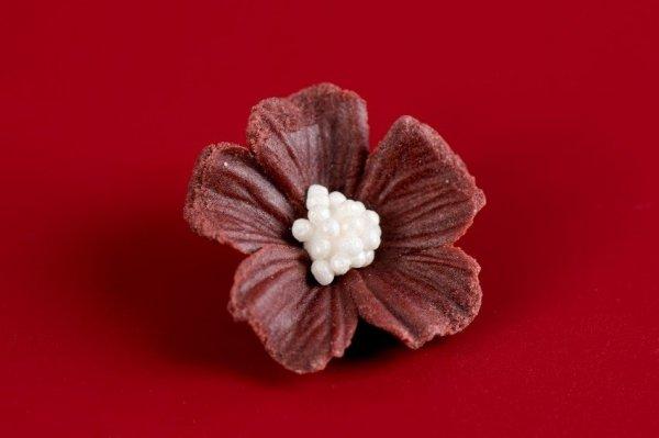 Niezapominajka kwiaty cukrowe 10szt czekoladowe