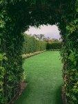 Ogród przydomowy - 5 Pomysłów