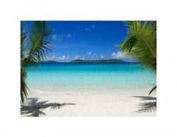 Virgin Islands beach - reprodukcja
