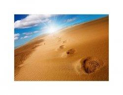 Footprints on sand dune - reprodukcja
