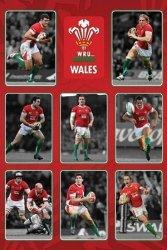 Wales R.U (Players) - plakat