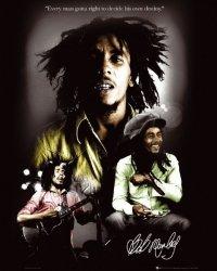 Bob Marley Destiny - plakat
