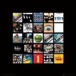 The Beatles Albums - reprodukcja