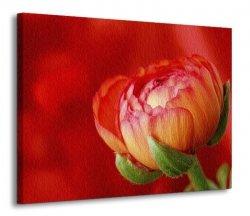 Obraz do salonu - Kwiat - 120x90 cm