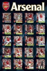 Arsenal Squad Profiles  - plakat