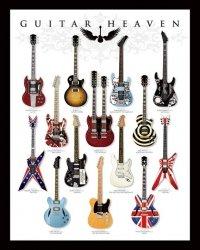Gitary - różne rodzaje - plakat