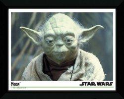 Star Wars Yoda - obraz w ramie