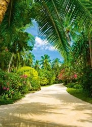 Fototapeta do sypialni - Tropikalny ogród botaniczny - 183x254 cm