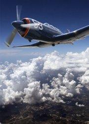 Fototapeta na ścianę  - Myśliwiec - 183x254 cm