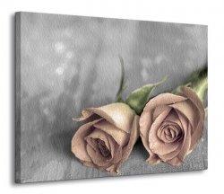 Obraz na płótnie - Kwiaty - Samotne róże BW - 90x120 cm