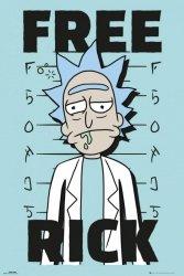 Rick and Morty Free Rick - plakat z serialu