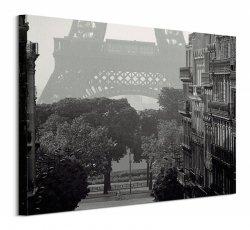 Eiffel Tower, Paris - obraz na płótnie