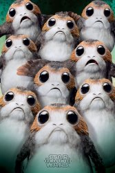 Star Wars The Last Jedi (Many Porgs) - plakat