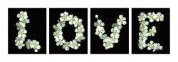 Miłość (Kwiaty) - reprodukcja