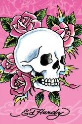 Pink Skull & Roses - plakat