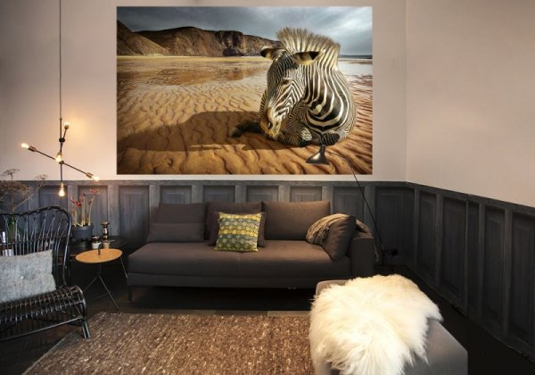 Fototapeta - Zebra na plaży - 175x115 cm