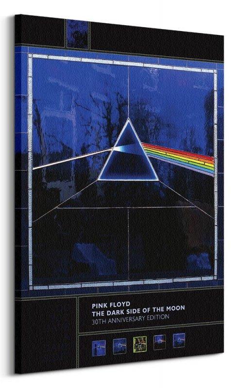 Pink Floyd Dark Side Of The Moon 30th Anniversary - obraz na płótnie