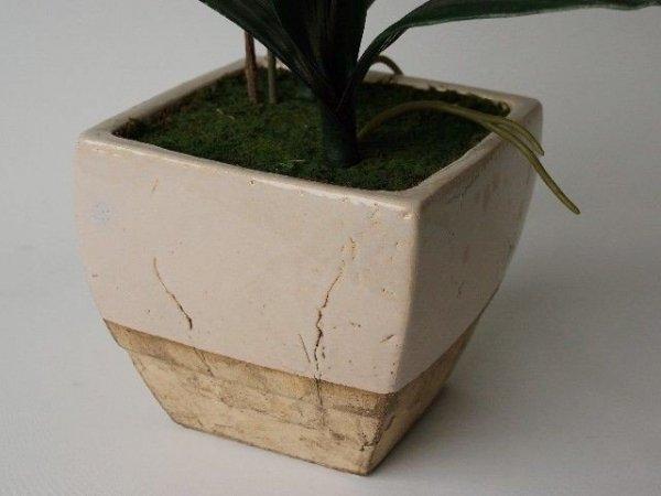 Sztuczny storczyk - W doniczce - 60x72cm - Biały