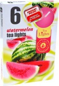 PODGRZEWACZ 6 SZTUK TEA LIGHT Walermelon